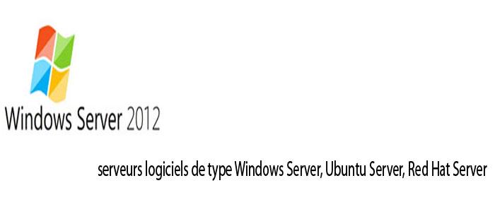 Serveurs logiciels de type Windows Server, Ubuntu Server, Red Hat Server